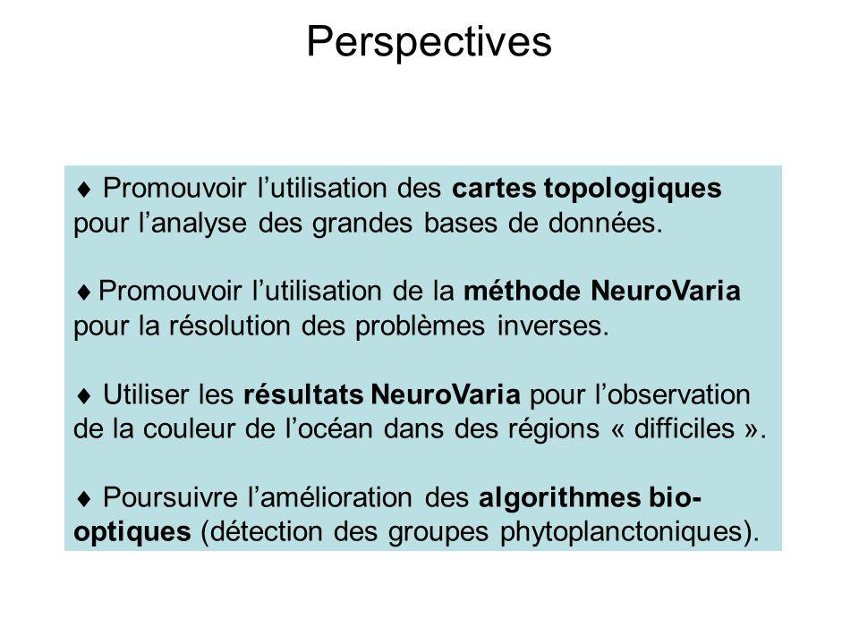 Perspectives  Promouvoir l'utilisation des cartes topologiques pour l'analyse des grandes bases de données.