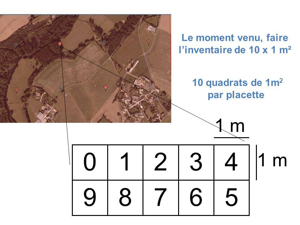 1 2 3 4 5 9 8 7 6 1 m Le moment venu, faire l'inventaire de 10 x 1 m²