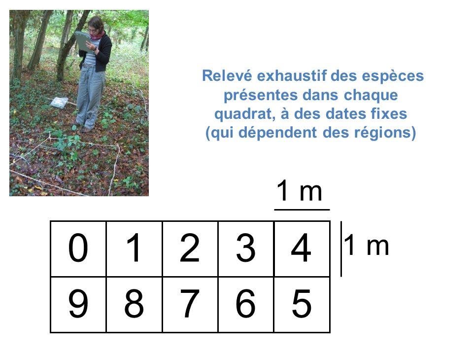 Relevé exhaustif des espèces présentes dans chaque quadrat, à des dates fixes (qui dépendent des régions)