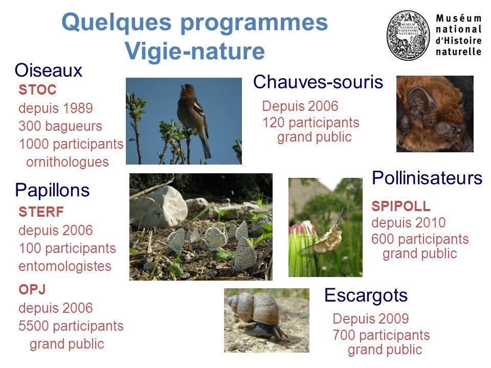 Quelques programmes Vigie-nature