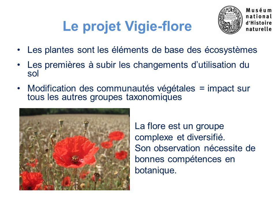 Le projet Vigie-flore Les plantes sont les éléments de base des écosystèmes. Les premières à subir les changements d'utilisation du sol.