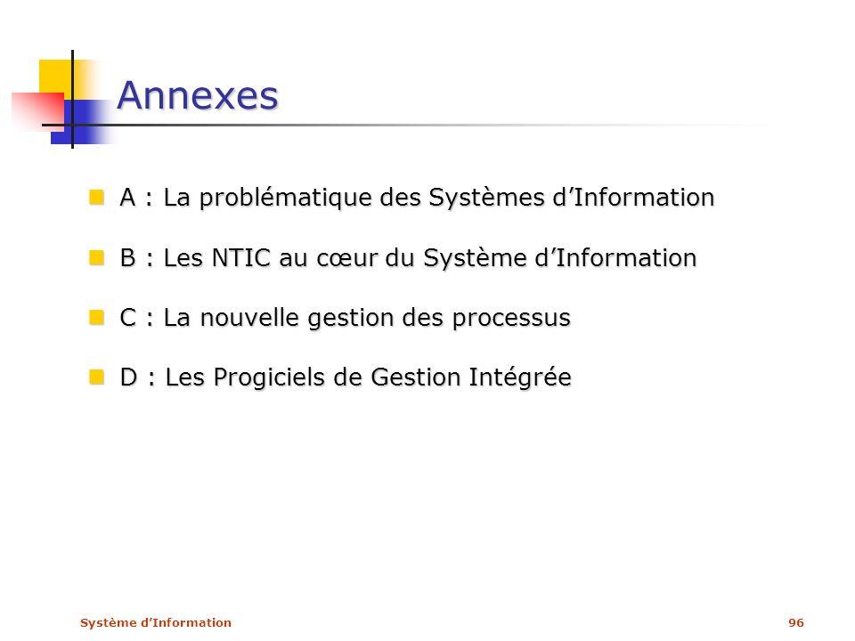 Annexes A : La problématique des Systèmes d'Information