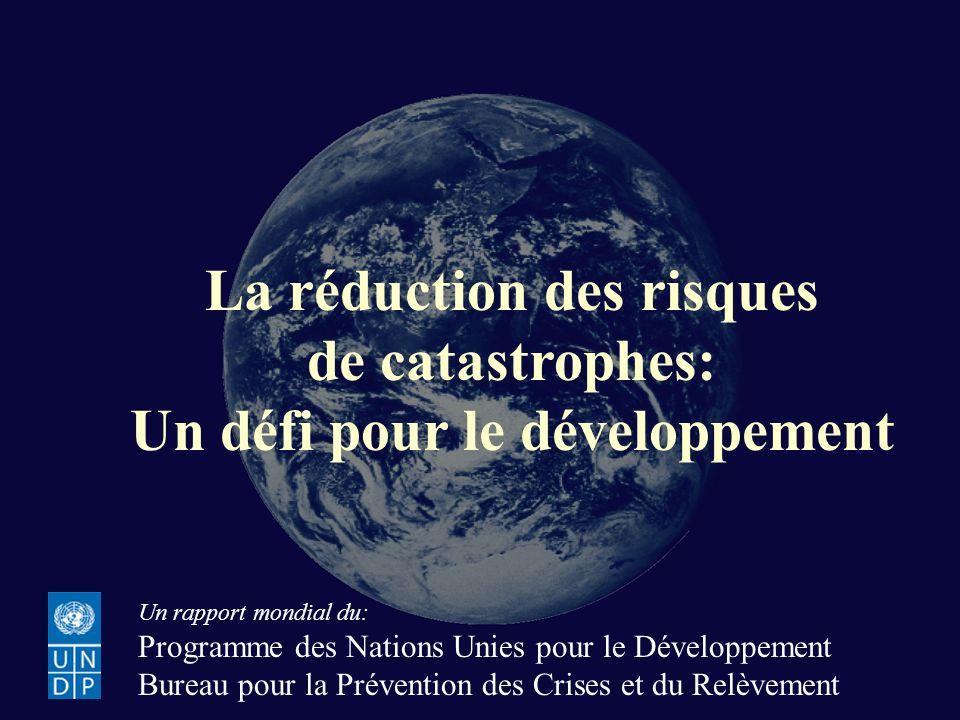 La réduction des risques Un défi pour le développement