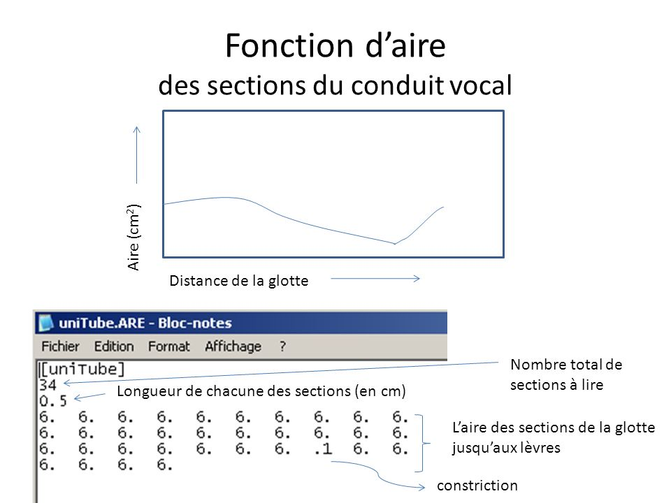 Fonction d'aire des sections du conduit vocal