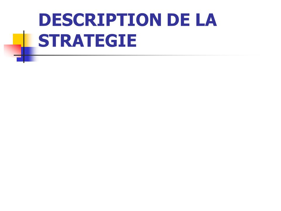 DESCRIPTION DE LA STRATEGIE