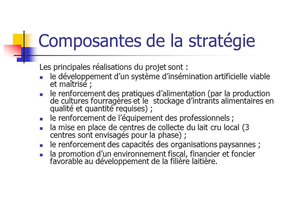 Composantes de la stratégie
