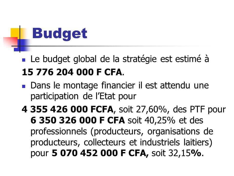 Budget Le budget global de la stratégie est estimé à