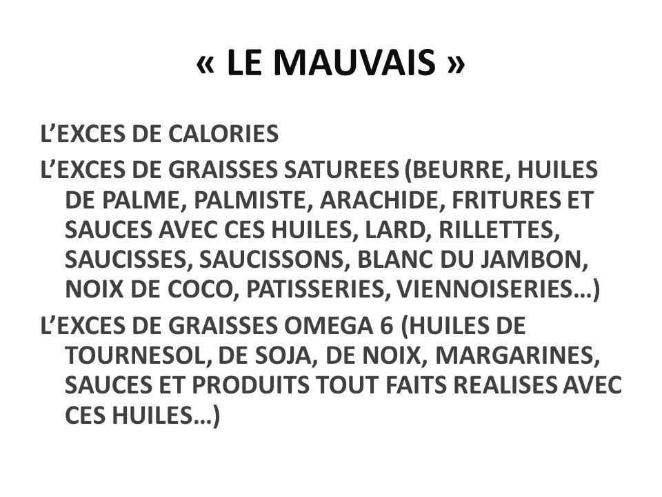 « LE MAUVAIS »