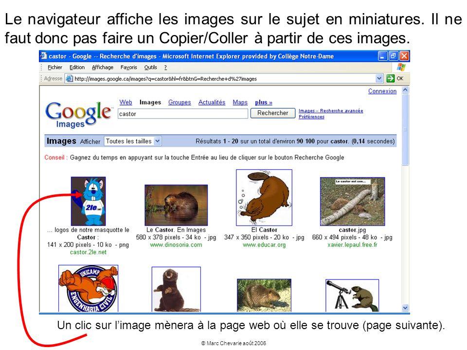 Le navigateur affiche les images sur le sujet en miniatures