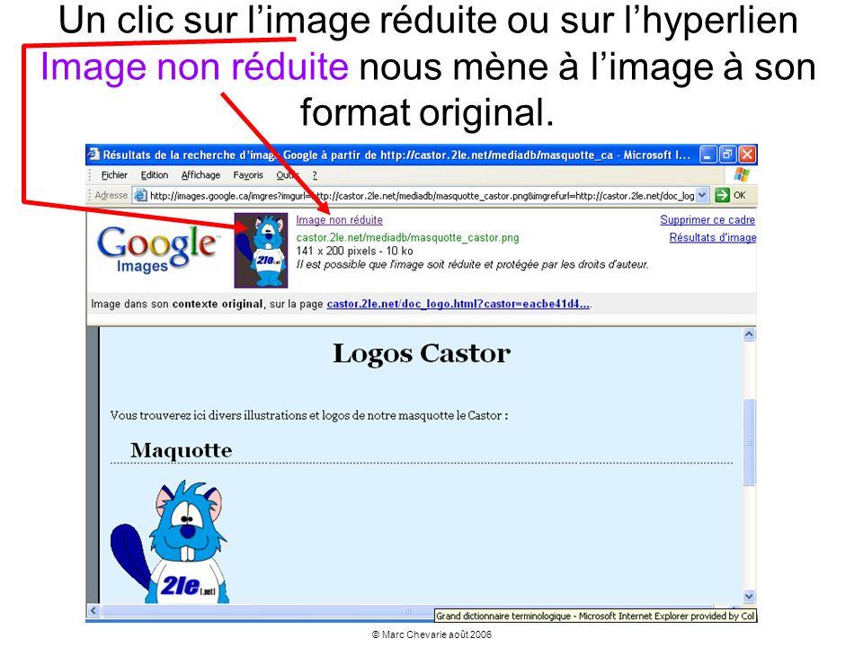Un clic sur l'image réduite ou sur l'hyperlien Image non réduite nous mène à l'image à son format original.