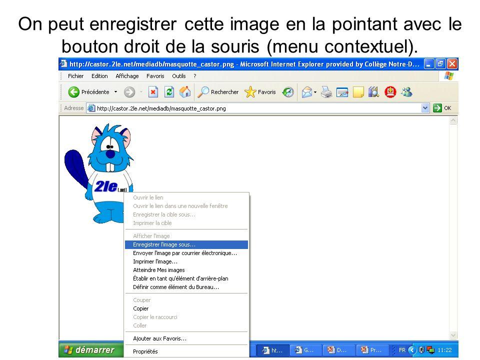 On peut enregistrer cette image en la pointant avec le bouton droit de la souris (menu contextuel).