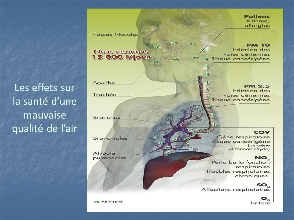 Les effets sur la santé d'une mauvaise qualité de l'air