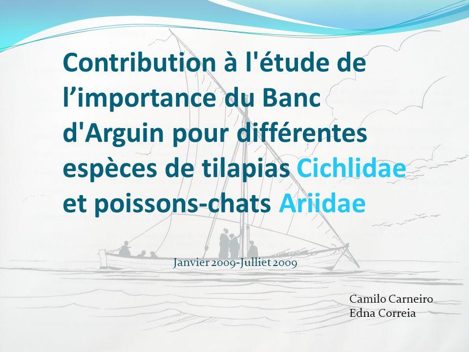 Contribution à l étude de l'importance du Banc d Arguin pour différentes espèces de tilapias Cichlidae et poissons-chats Ariidae