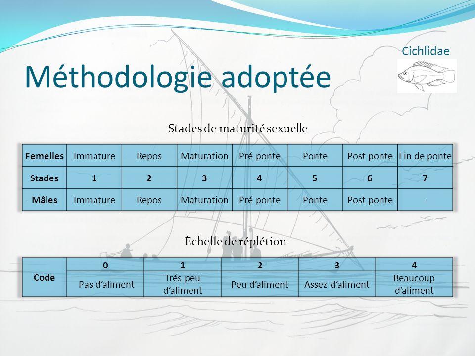 Méthodologie adoptée Cichlidae Stades de maturité sexuelle