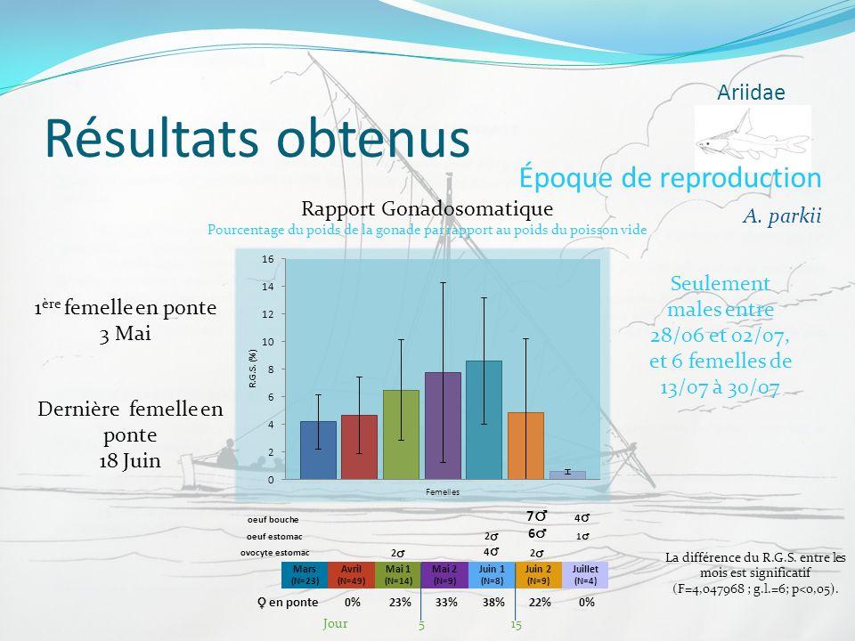 Résultats obtenus Époque de reproduction Ariidae