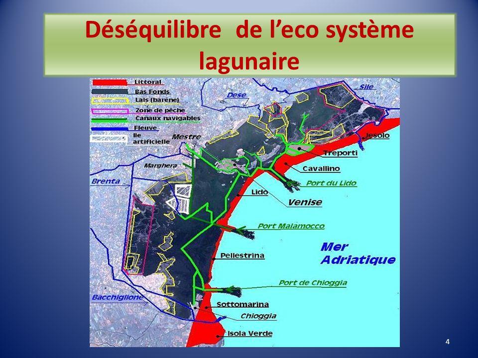 Déséquilibre de l'eco système lagunaire