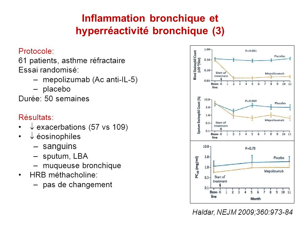 Inflammation bronchique et hyperréactivité bronchique (3)
