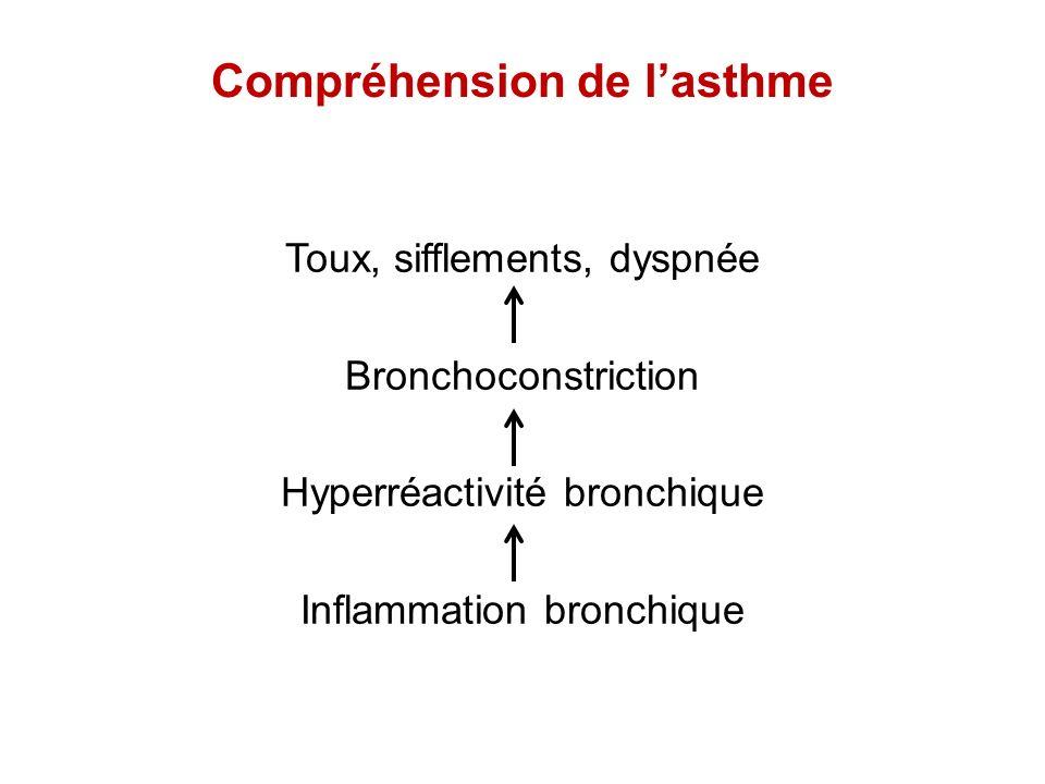 Compréhension de l'asthme