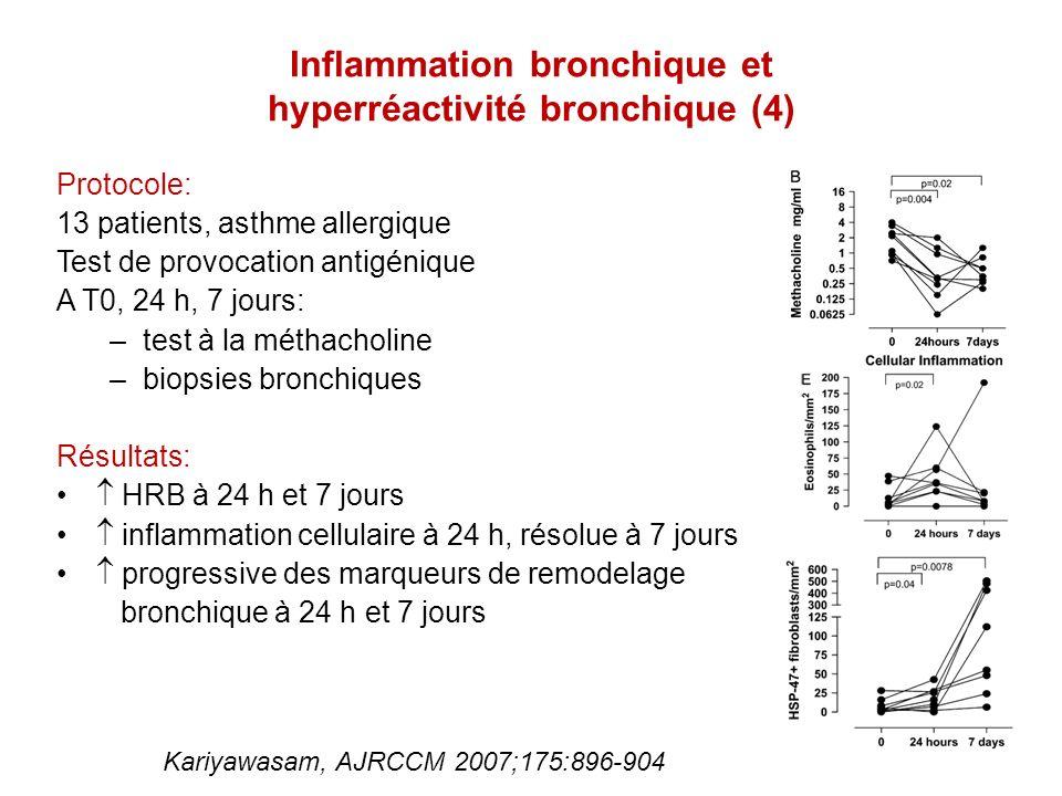 Inflammation bronchique et hyperréactivité bronchique (4)