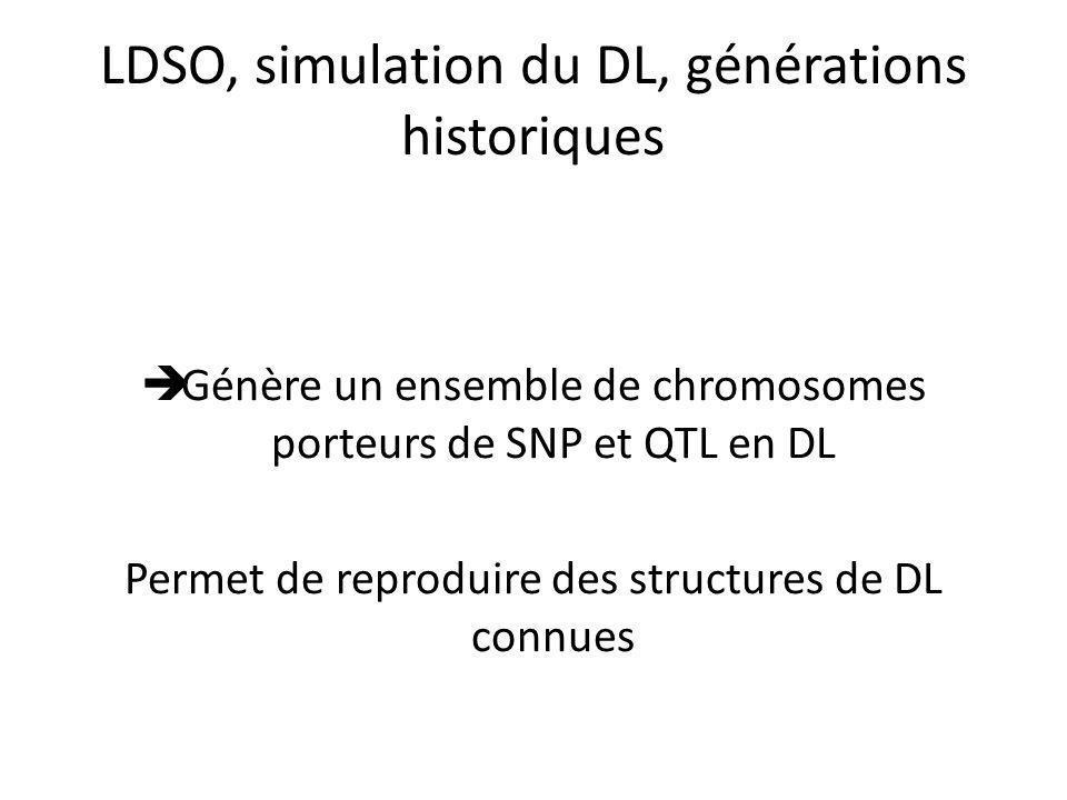 LDSO, simulation du DL, générations historiques