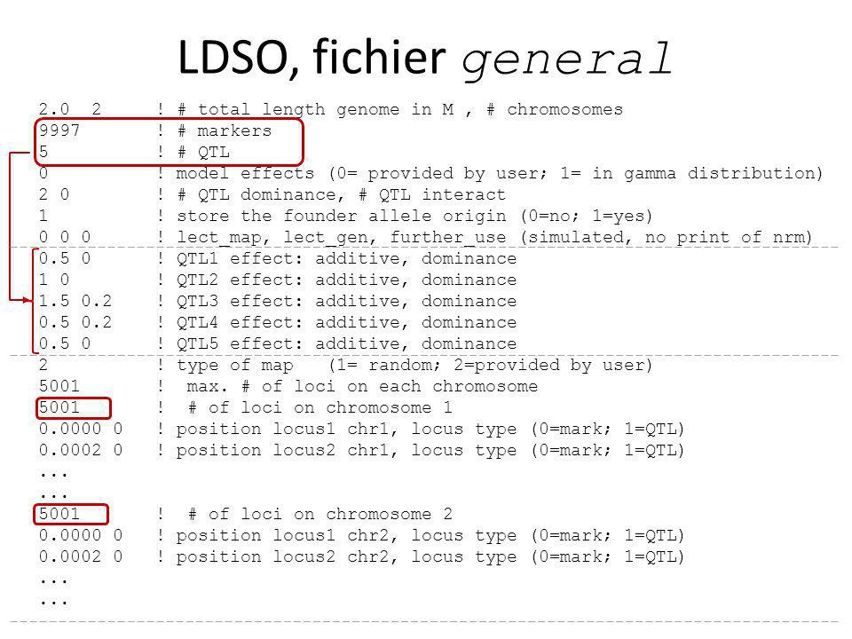LDSO, fichier general