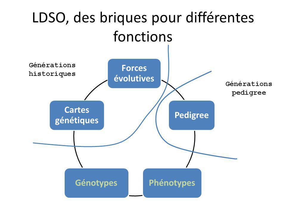 LDSO, des briques pour différentes fonctions