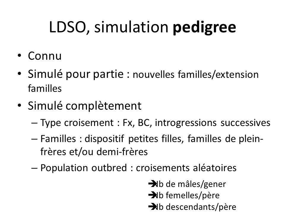 LDSO, simulation pedigree