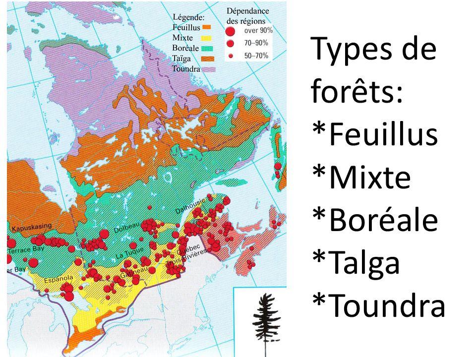 Types de forêts: *Feuillus