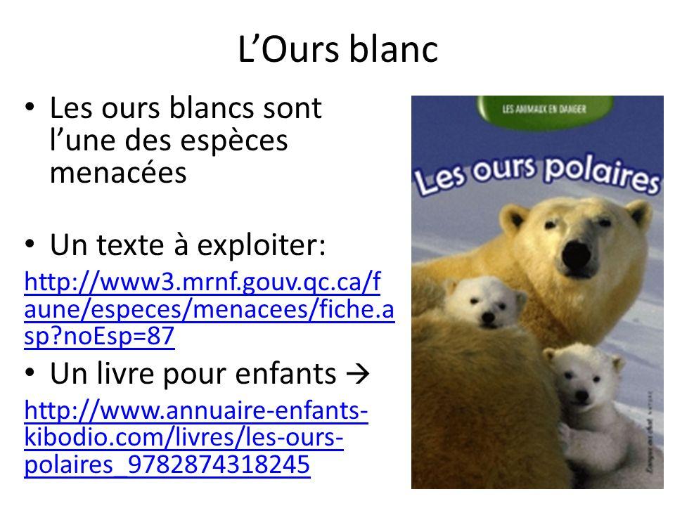 L'Ours blanc Les ours blancs sont l'une des espèces menacées