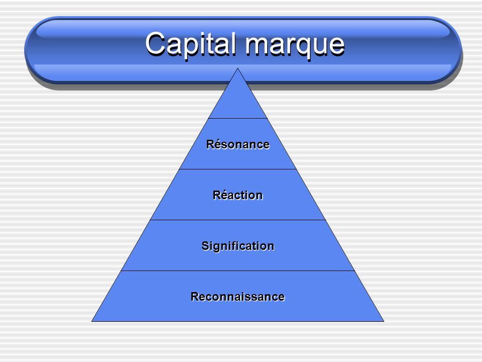 Capital marque Résonance quelle relation les clients entretiennent-ils avec la amrque.