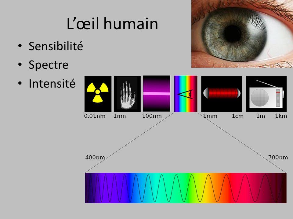 L'œil humain Sensibilité Spectre Intensité