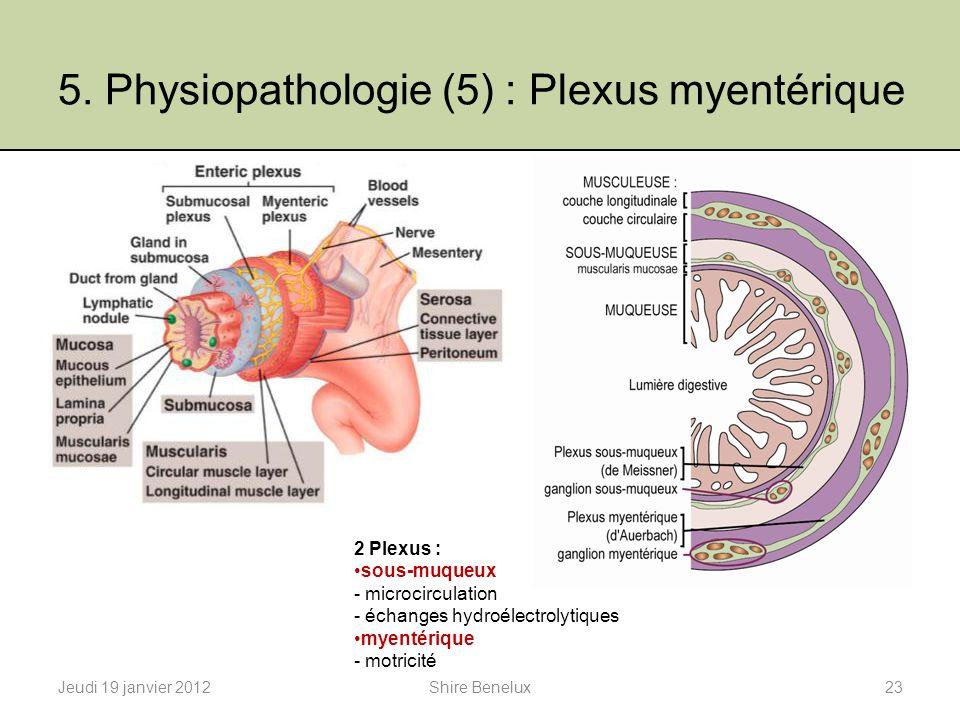 5. Physiopathologie (5) : Plexus myentérique