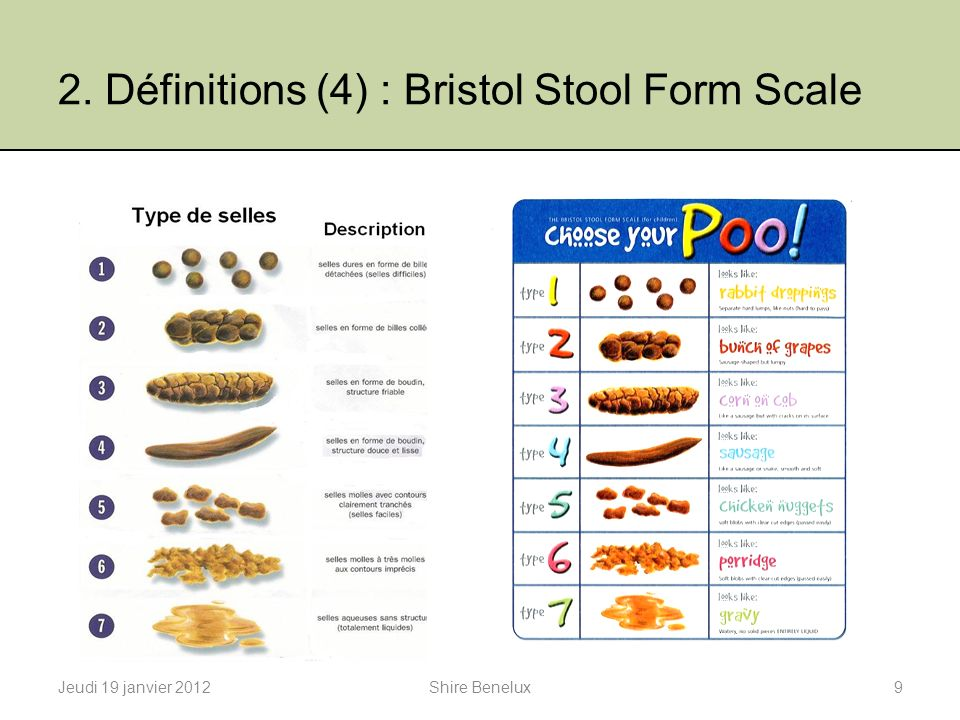 2. Définitions (4) : Bristol Stool Form Scale