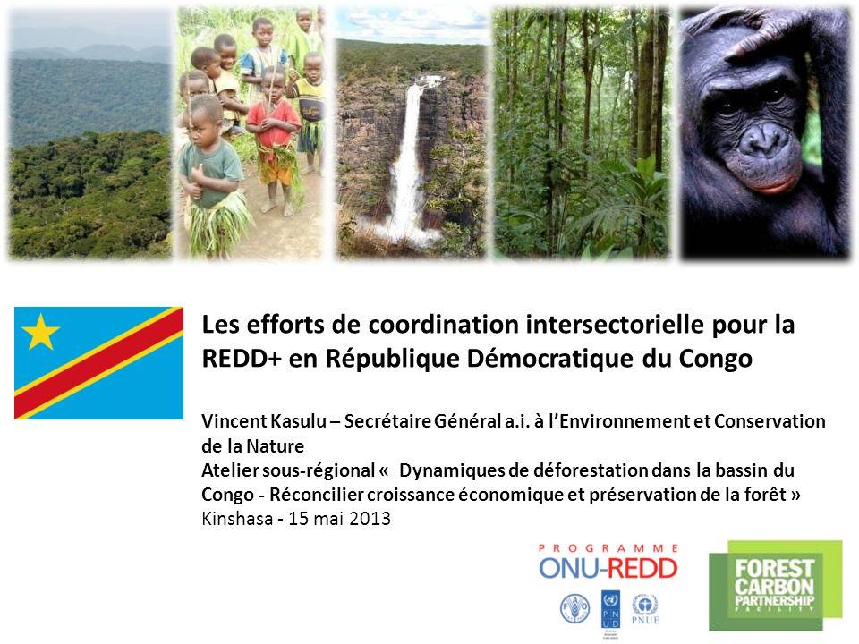 Les efforts de coordination intersectorielle pour la REDD+ en République Démocratique du Congo Vincent Kasulu – Secrétaire Général a.i. à l'Environnement et Conservation de la Nature Atelier sous-régional « Dynamiques de déforestation dans la bassin du Congo - Réconcilier croissance économique et préservation de la forêt » Kinshasa - 15 mai 2013