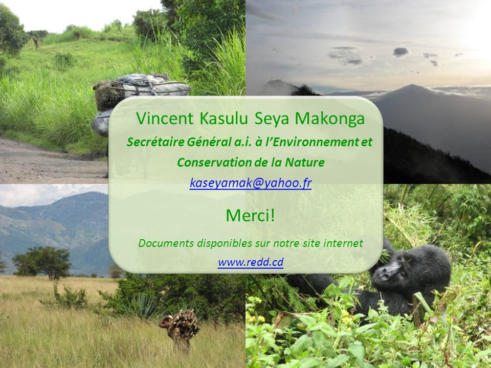 Secrétaire Général a.i. à l'Environnement et Conservation de la Nature