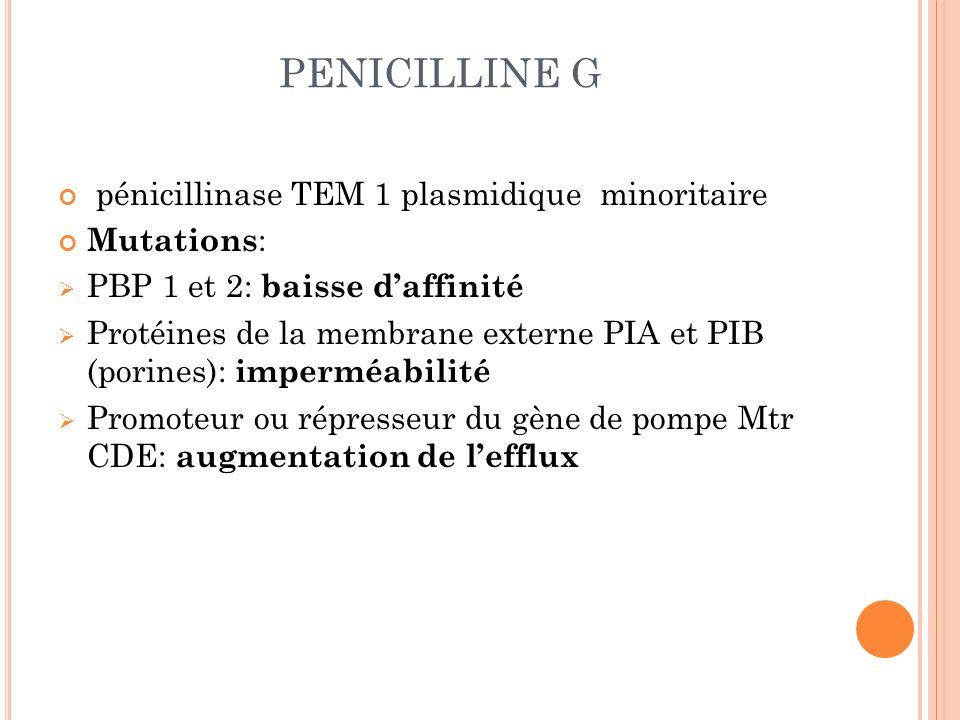 PENICILLINE G pénicillinase TEM 1 plasmidique minoritaire Mutations: