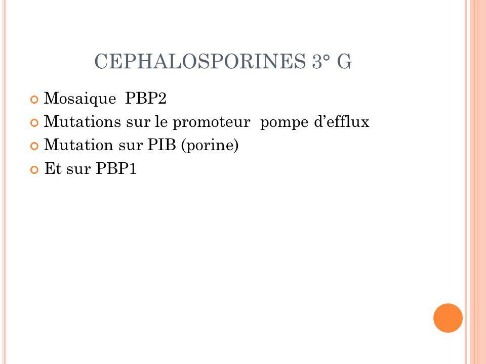 CEPHALOSPORINES 3° G Mosaique PBP2