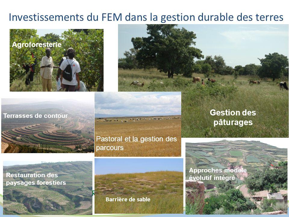 Investissements du FEM dans la gestion durable des terres
