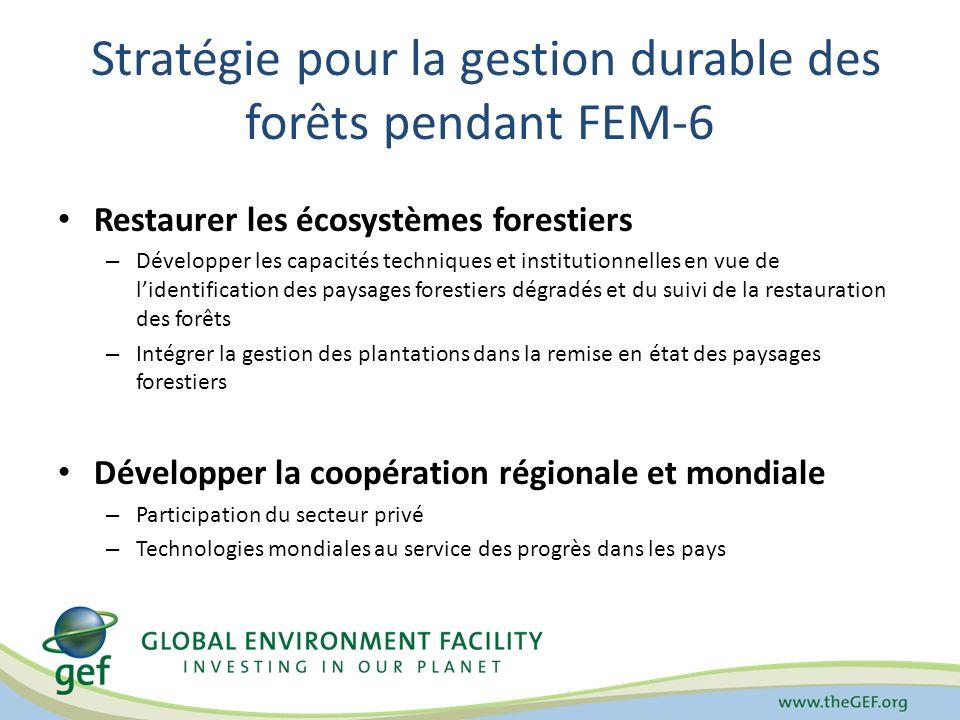 Stratégie pour la gestion durable des forêts pendant FEM-6