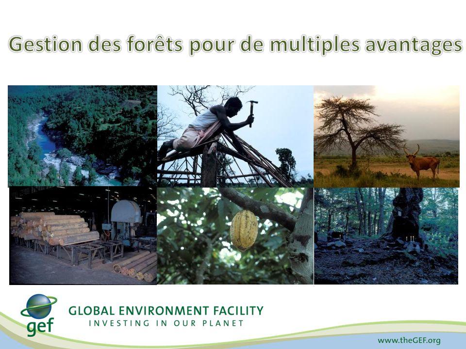 Gestion des forêts pour de multiples avantages