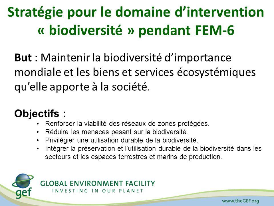 Stratégie pour le domaine d'intervention « biodiversité » pendant FEM-6