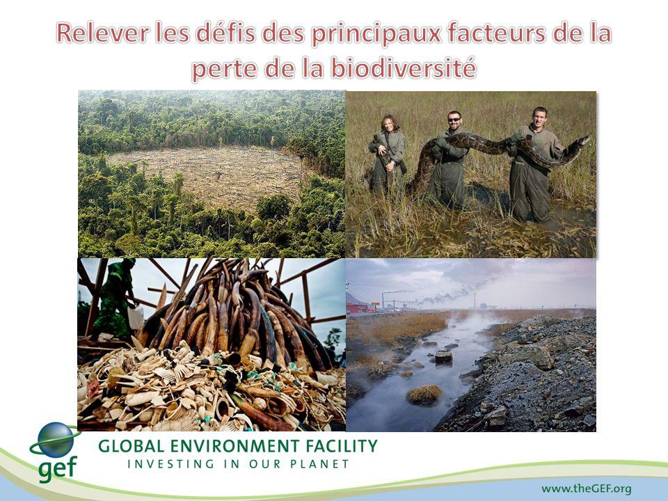 Relever les défis des principaux facteurs de la perte de la biodiversité