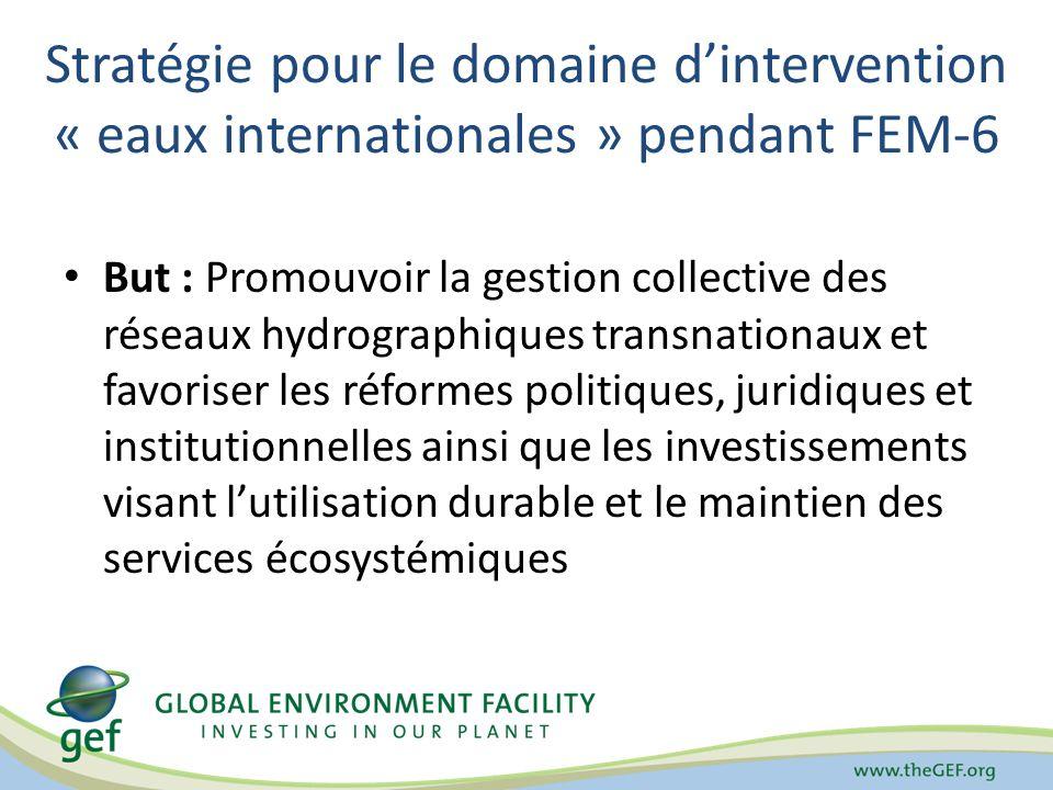 Stratégie pour le domaine d'intervention « eaux internationales » pendant FEM-6
