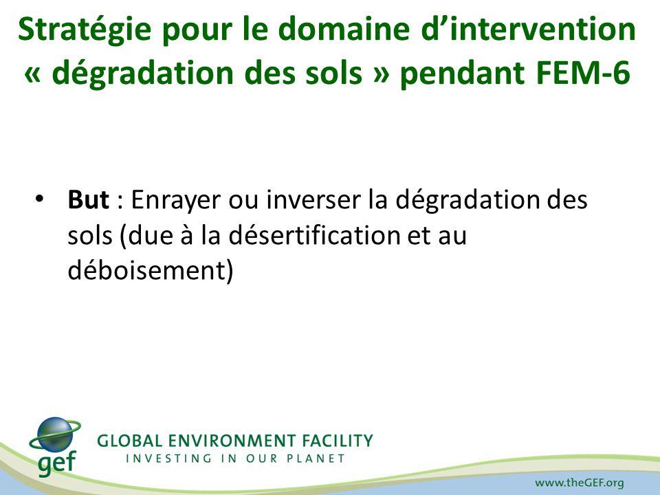 Stratégie pour le domaine d'intervention « dégradation des sols » pendant FEM-6
