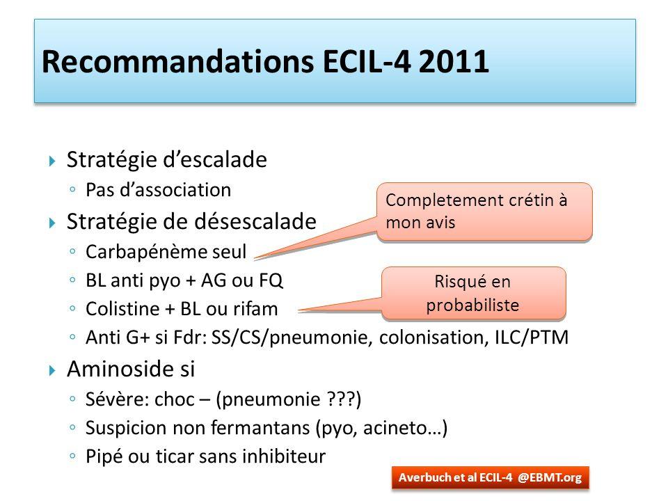 Recommandations ECIL-4 2011