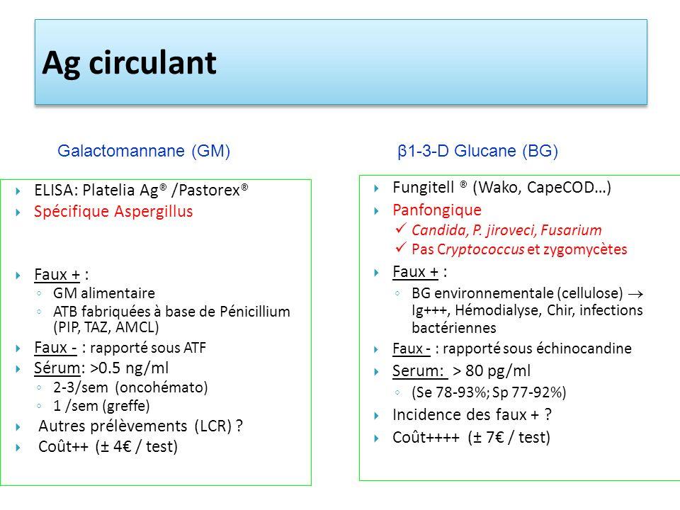 Ag circulant Fungitell ® (Wako, CapeCOD…)