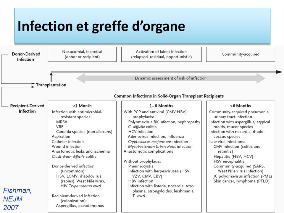 Infection et greffe d'organe