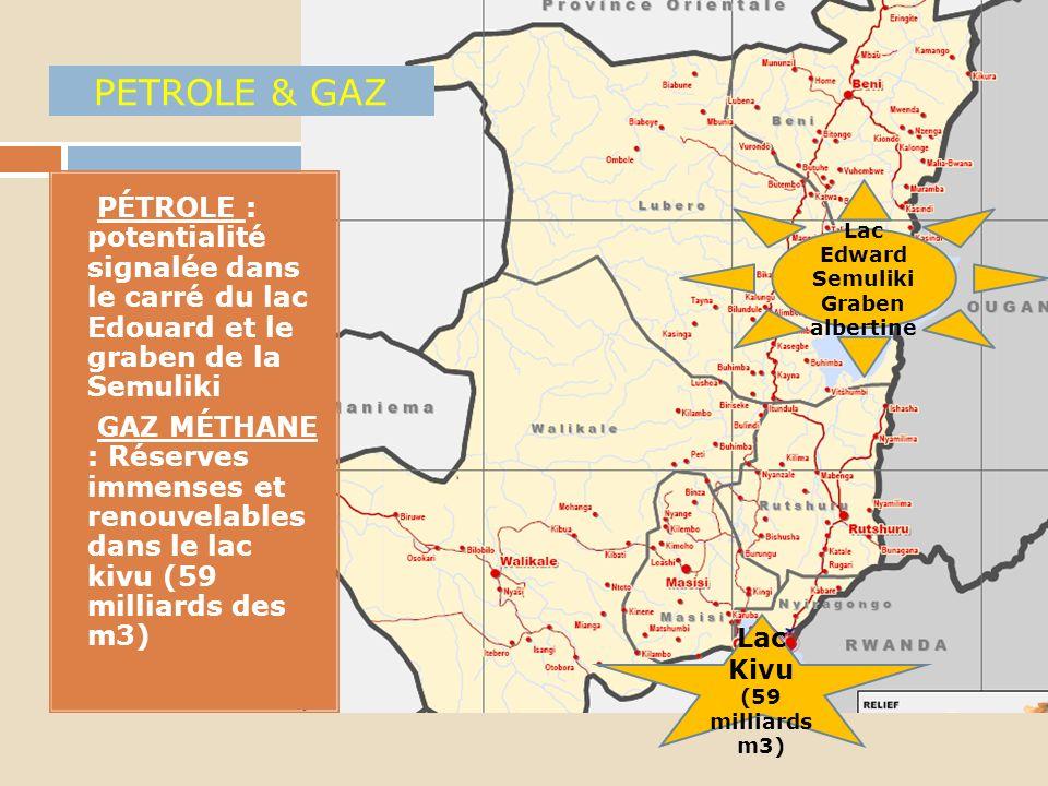 PETROLE & GAZ PÉTROLE : potentialité signalée dans le carré du lac Edouard et le graben de la Semuliki.