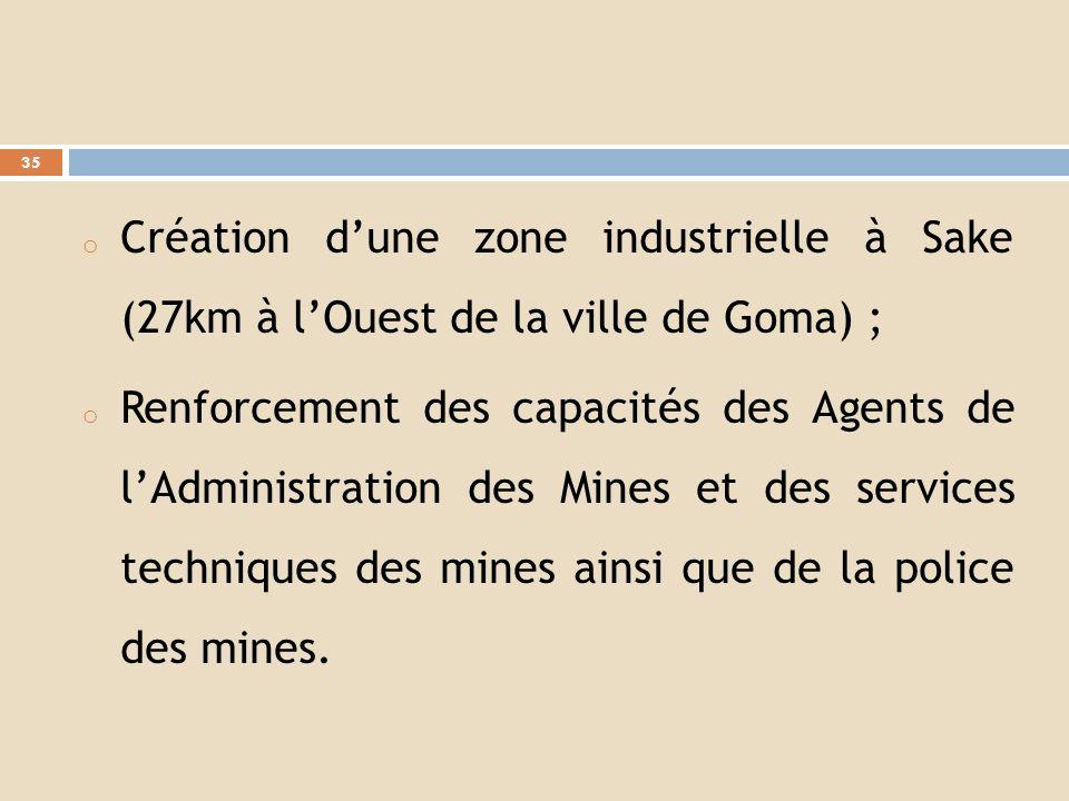 Création d'une zone industrielle à Sake (27km à l'Ouest de la ville de Goma) ;