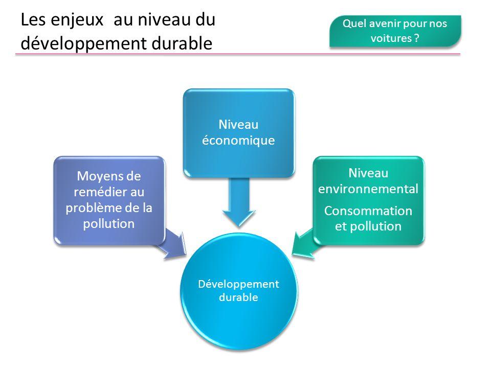 Les enjeux au niveau du développement durable